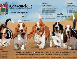 LARRONDO'S